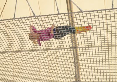 What Every Woman Needs to Know About Safety Nets